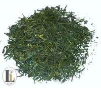 Japan Shincha Saemidori 50g Originalgebinde